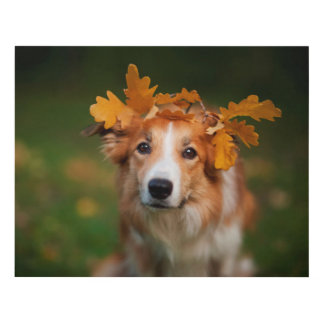 Red Border Collie With a Garland of Autumn Leaves Panel Wall Art