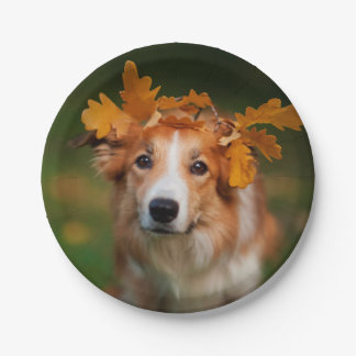 Red Border Collie With a Garland of Autumn Leaves Paper Plate