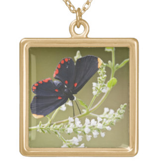 Red-bordered Pixie on white brush Square Pendant Necklace