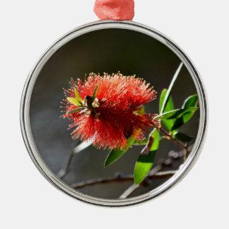 RED BOTTLE BRUSH FLOWER CALLISTEMON  AUSTRALIA METAL ORNAMENT