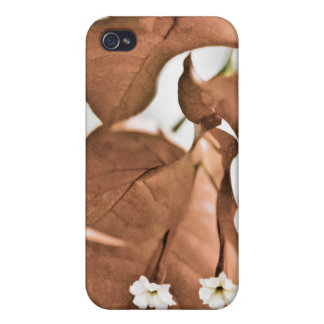 Red Bougainvillea iPhone 4 Covers