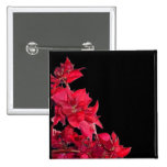 Red Bougainvillea on Black Pins