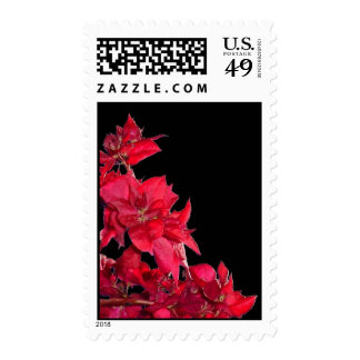 Red Bougainvillea on Black Postage Stamps