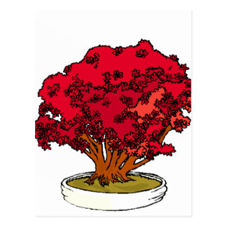 Red bougie type clump bonsai graphic postcard