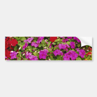 Red Bouquet of begonias flowers Bumper Stickers