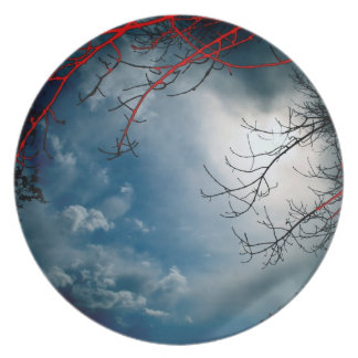 red branch melamine plate