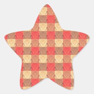 Red Brawn Vintage Grid Pattern Star Sticker