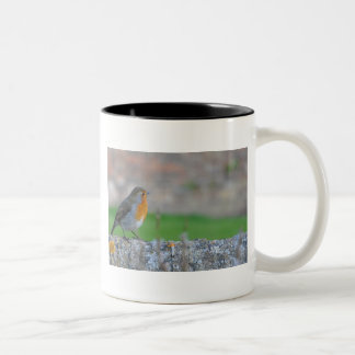 Red-breasted Flycatcher Two-Tone Coffee Mug