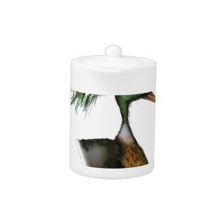 red breasted merganser, tony fernandes teapot
