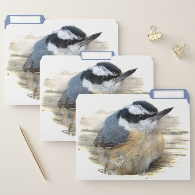 Red-breasted Nuthatch Bird File Folder Set