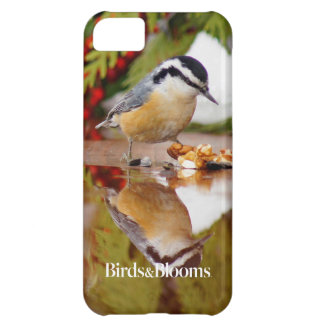 Red-breasted Nuthatch iPhone 5C Cases