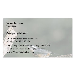 Red-breasted nuthatch Double-Sided standard business cards (Pack of 100)