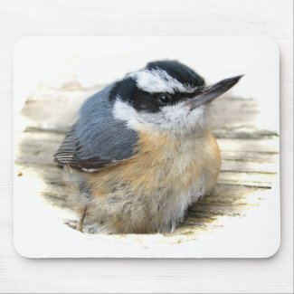 Red-breasted Nuthatch zazzle_mousepad