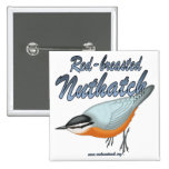 Red-breasted Nuthatch Pinback Button