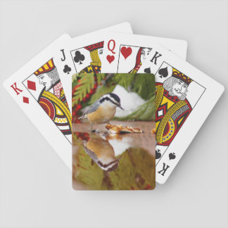 Red-breasted Nuthatch Playing Cards
