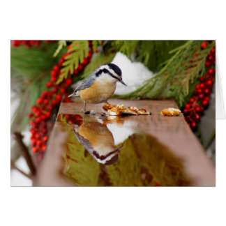 Red-breasted Nuthatch Stationery Note Card
