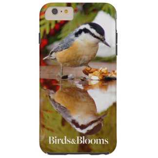 Red-breasted Nuthatch Tough iPhone 6 Plus Case