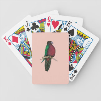 red breasted parrot, tony fernandes bicycle playing cards