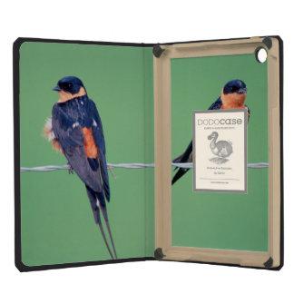 Red-Breasted Swallows (Hirundo Semirufa) iPad Mini Covers