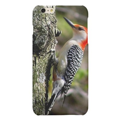 Red Breasted Woodpecker iPhone Case