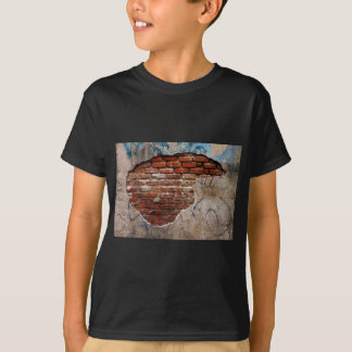 Red Brick Under Graffiti Laced Cement Wall T-Shirt