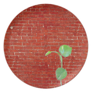 Red brick wall dinner plate