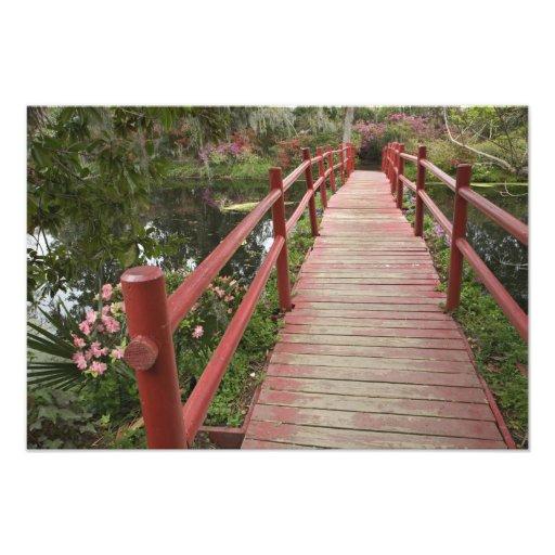 Red bridge over pond, Magnolia Plantation, Art Photo
