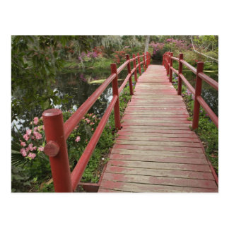 Red bridge over pond, Magnolia Plantation, Postcard