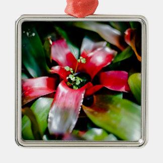 Red Bromeliad Metal Ornament