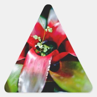 Red Bromeliad Triangle Sticker