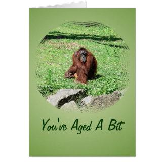 Red-Brown Haired Orangutan Sitting On Grass Card