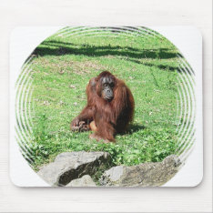 Red-brown Haired Orangutan Sitting On Grass Mouse Pad at Zazzle