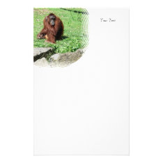 Red-brown Haired Orangutan Sitting On Grass Stationery at Zazzle