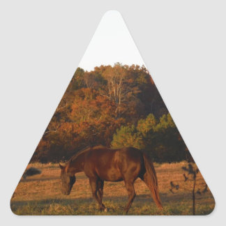 Red  Brown horse, autumn woods. Triangle Sticker