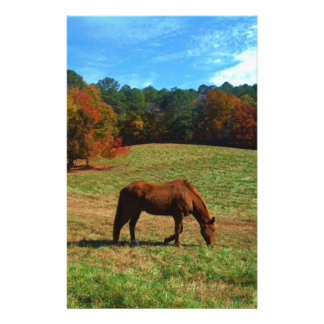 Red Brown horse, fall trees, blue skies Stationery