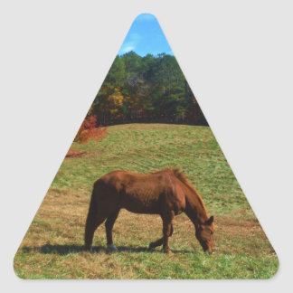 Red Brown horse, fall trees, blue skies Triangle Sticker