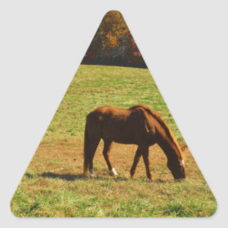 Red Brown horse in the  autumn trees Triangle Sticker