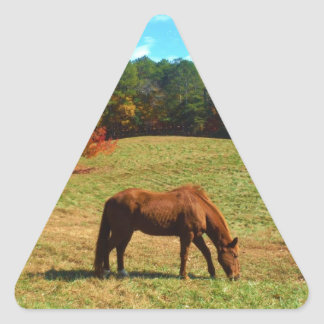 Red  Brown horse, Teal Blue sky Triangle Sticker