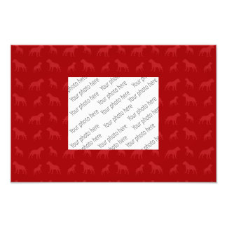 Red bulldog pattern photo print