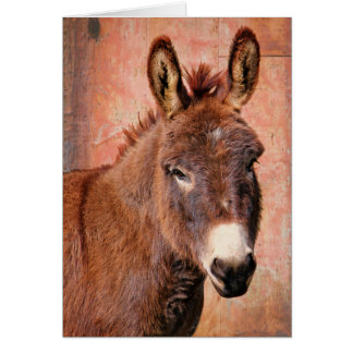 Red Burro Donkey Greeting Birthday Card