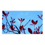 Red Butterfly Leaves Business Card