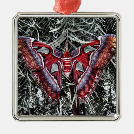 Red Butterfly Square Metal Christmas Ornament