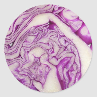 Red cabbage classic round sticker