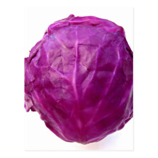 Red Cabbage Postcard