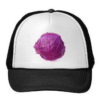 Red Cabbage Trucker Hat