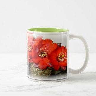 Red Cactus Blossom Mug