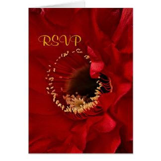 Red Cactus flower in bloom RSVP Card