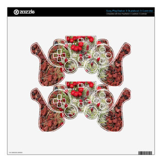 Red cactus flowers, Utah, USA Skins For PS3 Controllers