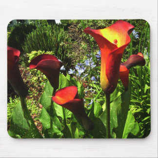Red Cala Lilies Mousepad
