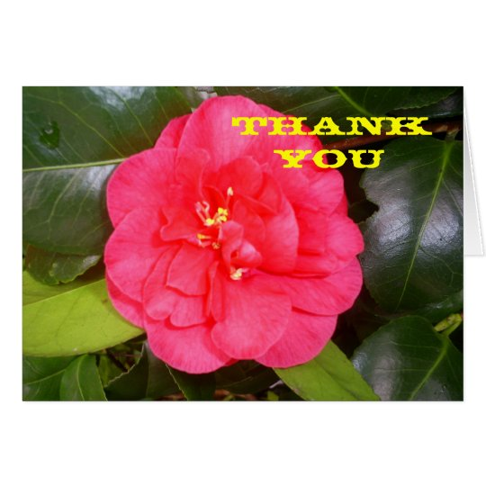 Red Camelia any occasion greeting card